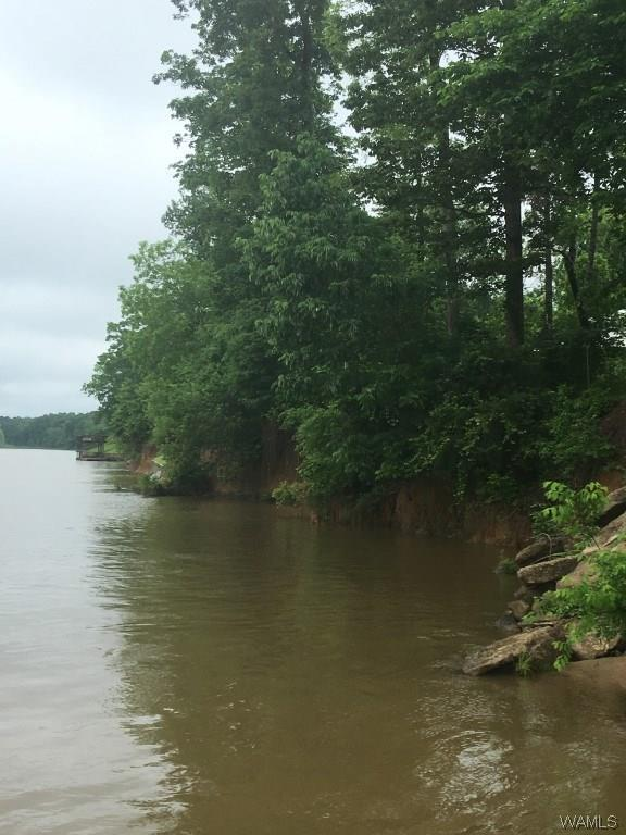 96 Two Rivers Road N, WEST GREENE, AL 35462 (MLS #122699) :: The Advantage Realty Group