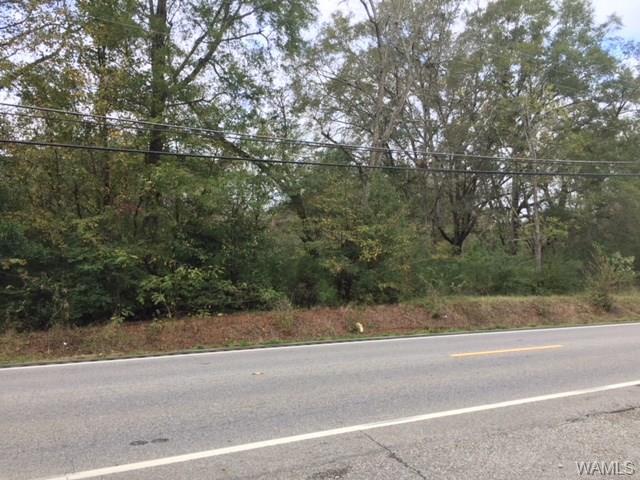 0 Culver Road, TUSCALOOSA, AL 35401 (MLS #124736) :: The Gray Group at Keller Williams Realty Tuscaloosa