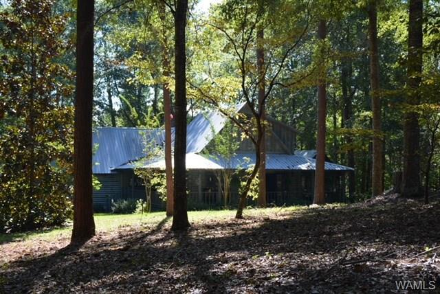 5180 Co Rd 21, DEMOPOLIS, AL 36732 (MLS #125611) :: The Advantage Realty Group