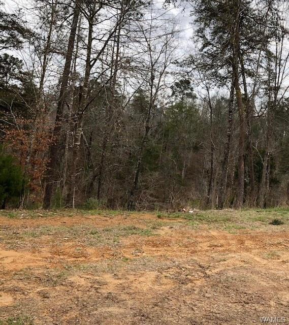 10264 Legacy Lane, NORTHPORT, AL 35475 (MLS #125911) :: The Advantage Realty Group