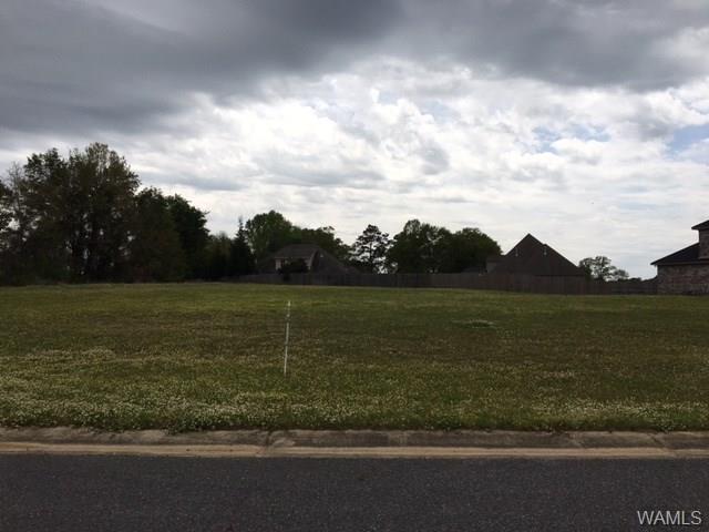 15355 Timber Springs Lane, MOUNDVILLE, AL 35474 (MLS #126535) :: Williamson Realty Group