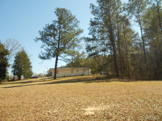 36981 Highway 69 S, MOUNDVILLE, AL 35474 (MLS #126835) :: The Advantage Realty Group