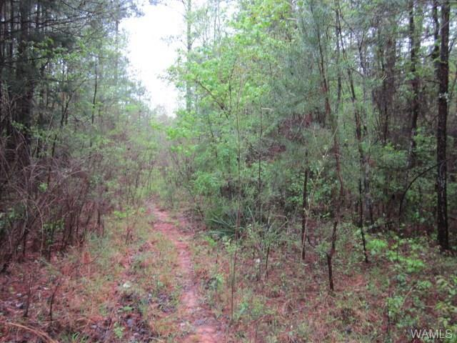 0 Floyd Blackmon Road #4, NORTHPORT, AL 35475 (MLS #127075) :: The Advantage Realty Group