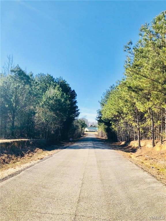 Lot 30 Lake Hills North Drive, NORTHPORT, AL 35475 (MLS #127505) :: The Gray Group at Keller Williams Realty Tuscaloosa