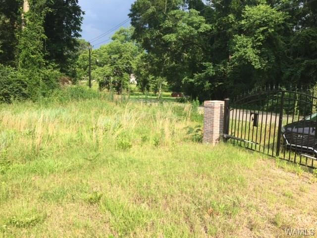 0 Highway 17 S, YORK, AL 36925 (MLS #127580) :: The Advantage Realty Group