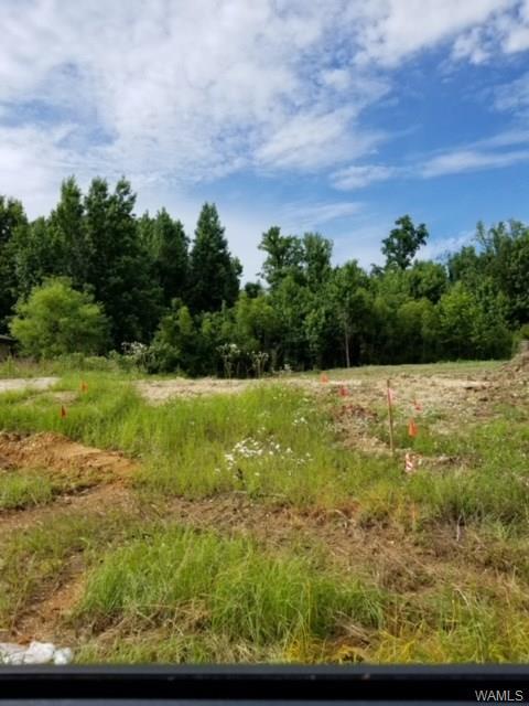 320 Prairie Field Drive, TUSCALOOSA, AL 35405 (MLS #127650) :: The Advantage Realty Group