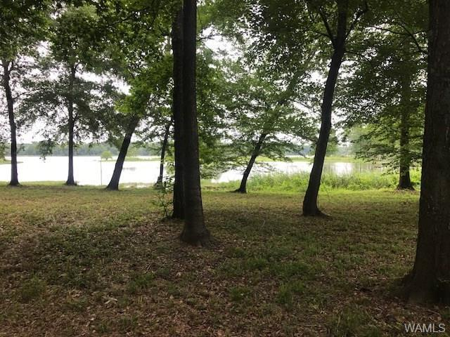 Lot 77 Cypress Point Drive, AKRON, AL 35441 (MLS #127684) :: The Advantage Realty Group