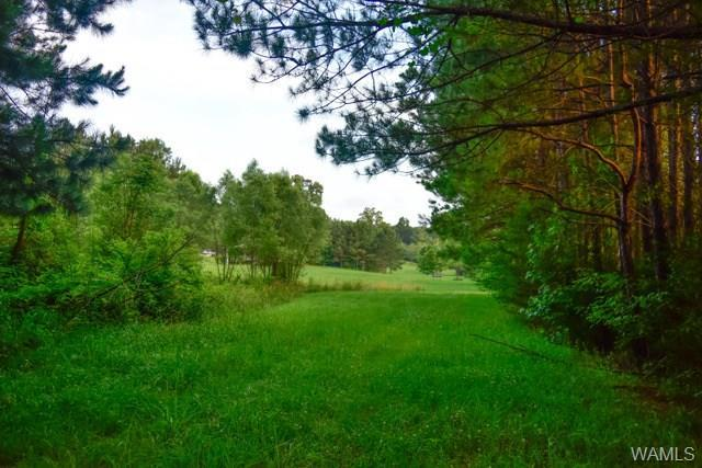 0 Woodland Lake Road, MCCALLA, AL 35111 (MLS #127687) :: The Advantage Realty Group
