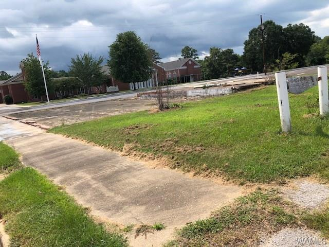 117 8th W Avenue, LINDEN, AL 36748 (MLS #128429) :: The Advantage Realty Group