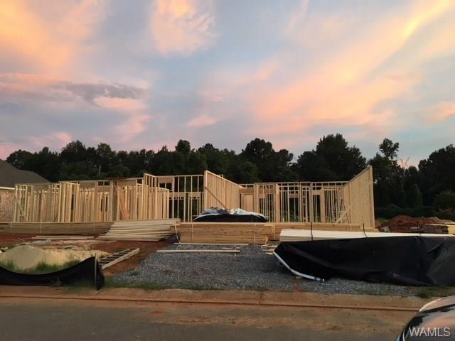 17835 Alecia Drive, VANCE, AL 35490 (MLS #128479) :: Alabama Realty Experts