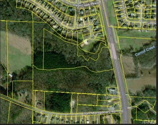 0 Hwy 43 N, NORTHPORT, AL 35475 (MLS #128658) :: The Advantage Realty Group