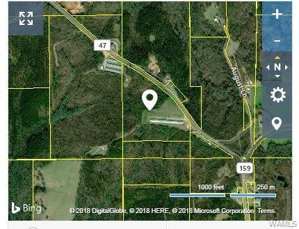 0 County Rd 47, GORDO, AL 35466 (MLS #130055) :: The Gray Group at Keller Williams Realty Tuscaloosa