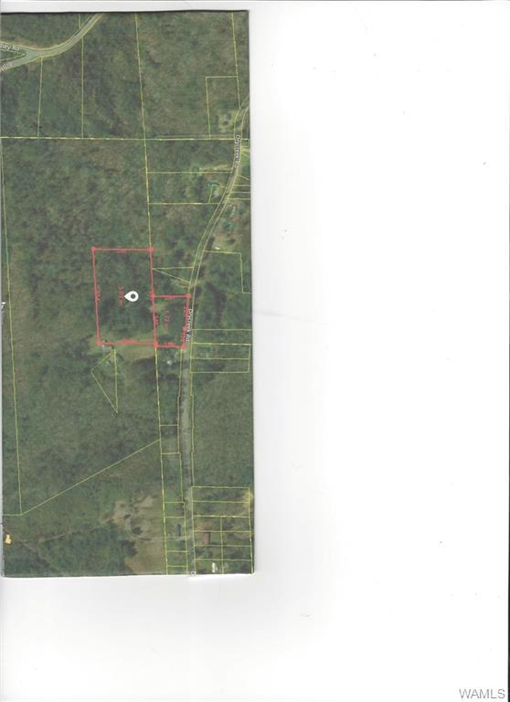 0000 Dry Creek Road, FOSTERS, AL 35463 (MLS #130209) :: The Alice Maxwell Team