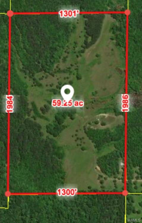 1357 Greenleaf Road, MOUNDVILLE, AL 35474 (MLS #130277) :: The Advantage Realty Group