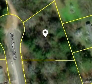 LOT 64 Blue Pine Circle, BROOKWOOD, AL 35444 (MLS #130421) :: The Gray Group at Keller Williams Realty Tuscaloosa