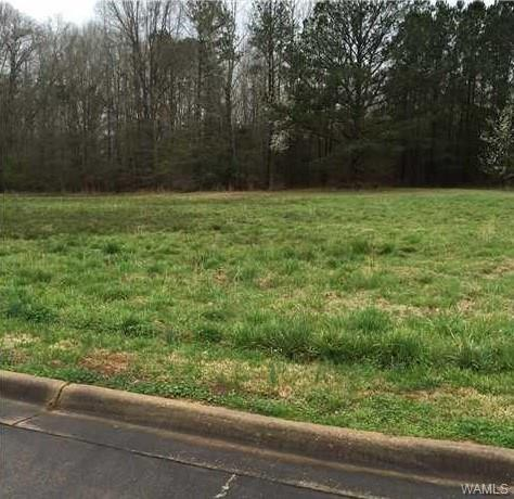 0 Manor Circle, REFORM, AL 35481 (MLS #131317) :: Wes York Team