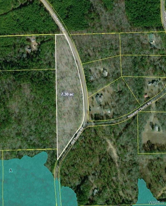 0 Old Fayette Road, NORTHPORT, AL 35475 (MLS #132772) :: The Alice Maxwell Team