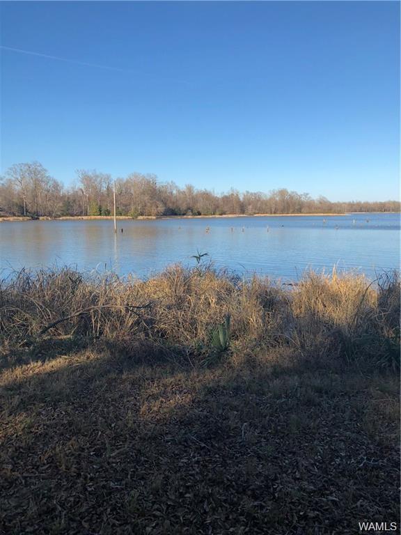 48 Black Warrior Bay, AKRON, AL 35441 (MLS #133131) :: The Gray Group at Keller Williams Realty Tuscaloosa