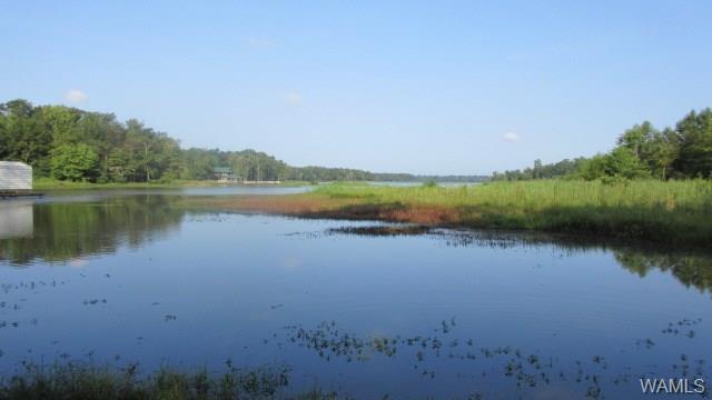lot 70 Brush Creek, SAWYERVILLE, AL 35776 (MLS #133943) :: The Gray Group at Keller Williams Realty Tuscaloosa