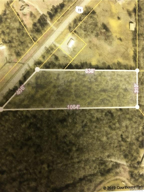 00 Us-11 South, FOSTERS, AL 35463 (MLS #133986) :: The Alice Maxwell Team