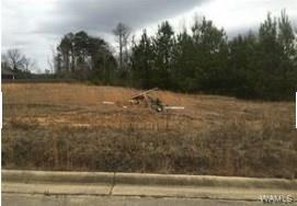 148 Meadowlake Drive W #148, NORTHPORT, AL 35473 (MLS #134076) :: The Advantage Realty Group