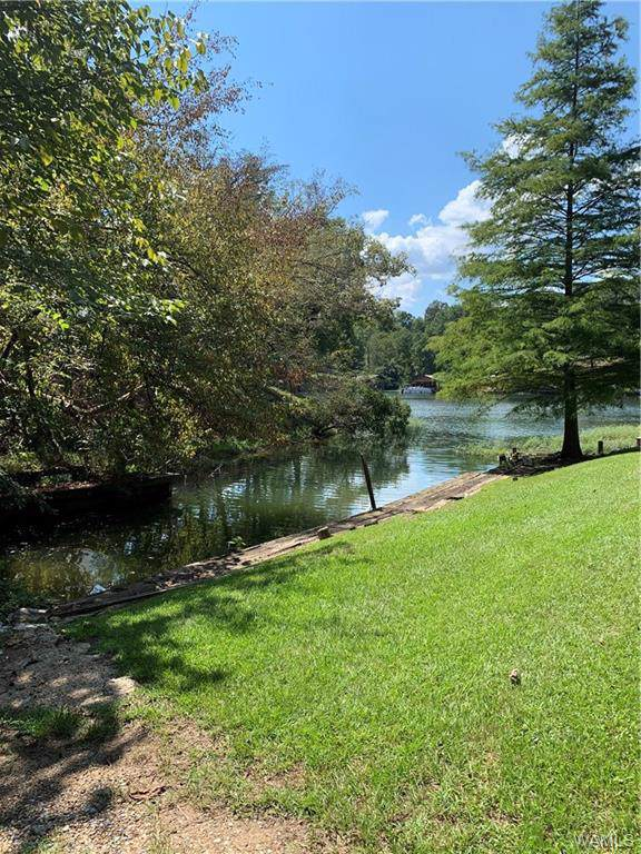 14 Beacon Point Drive, NORTHPORT, AL 35475 (MLS #134902) :: The Alice Maxwell Team