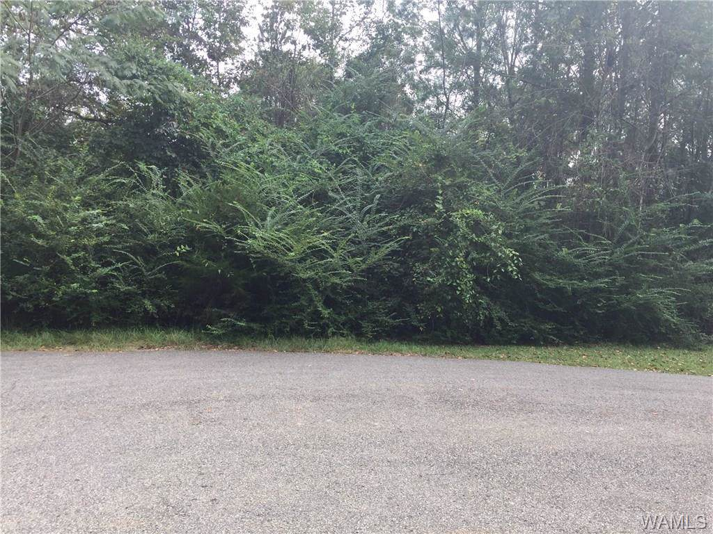 LOT 63 Blue Pine Circle - Photo 1