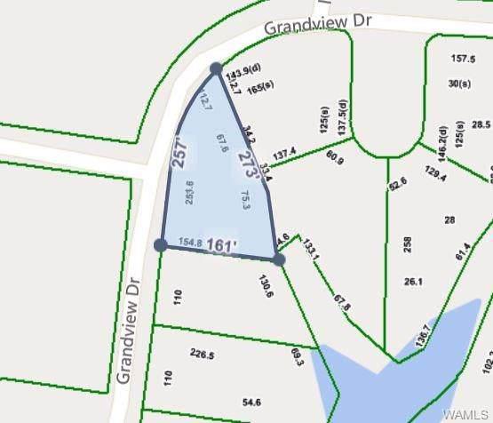 26 Grandview Drive, NORTHPORT, AL 35475 (MLS #135034) :: Hamner Real Estate