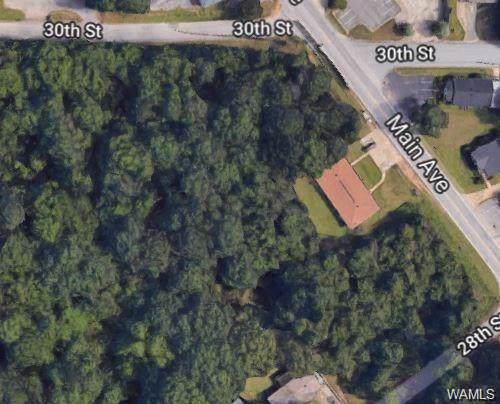 000 Main Avenue, NORTHPORT, AL 35476 (MLS #135738) :: Hamner Real Estate