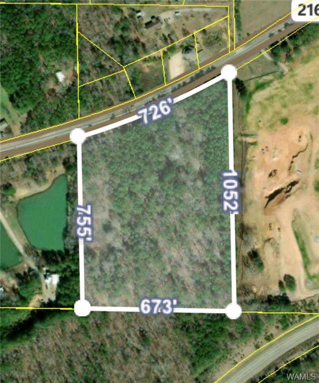1 Hwy 216 Highway, MCCALLA, AL 35111 (MLS #135964) :: The Gray Group at Keller Williams Realty Tuscaloosa