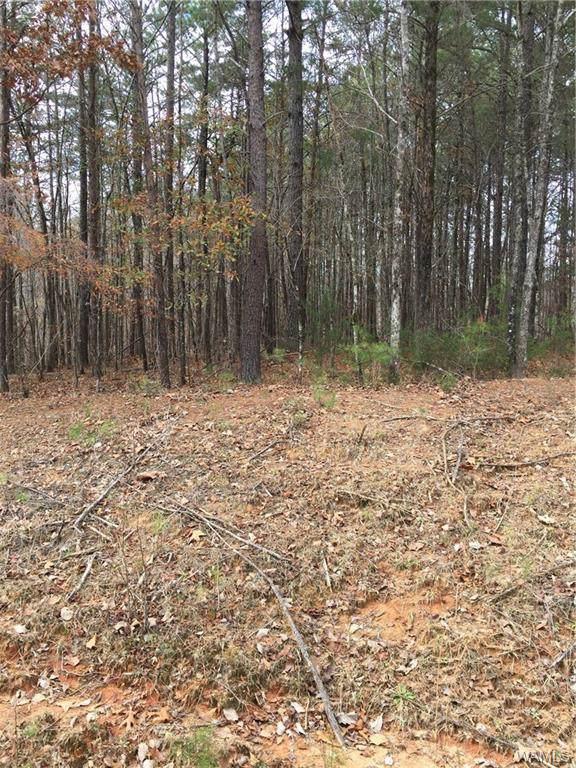 00000 Sexton Bend, TUSCALOOSA, AL 35406 (MLS #136080) :: The Gray Group at Keller Williams Realty Tuscaloosa