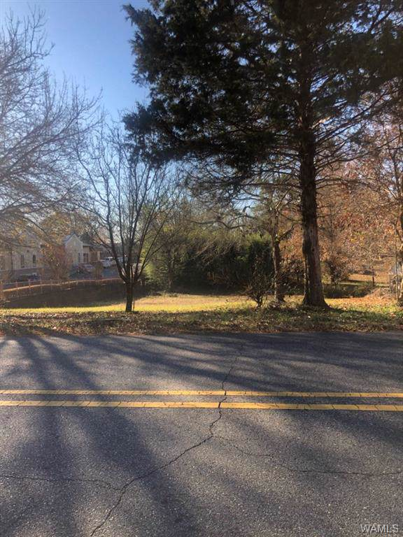 0 32nd Street, NORTHPORT, AL 35476 (MLS #136148) :: Hamner Real Estate