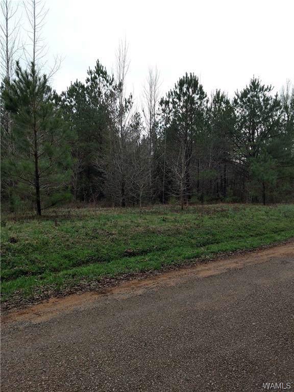 0 Sandy Fork Circle, MOUNDVILLE, AL  (MLS #136522) :: The Gray Group at Keller Williams Realty Tuscaloosa