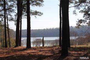 0 Stonehedge Cliffs Road, NORTHPORT, AL 35475 (MLS #136735) :: The K|W Group