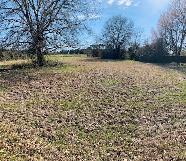 lot 2 Carthage Drive, MOUNDVILLE, AL 35474 (MLS #136826) :: The Advantage Realty Group