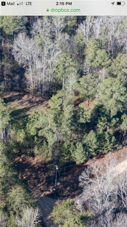 10700B Sexton Bend Road, TUSCALOOSA, AL 35406 (MLS #136877) :: The Advantage Realty Group