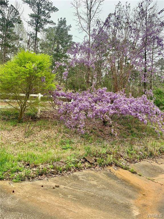 11020 Indian Creek Road, DUNCANVILLE, AL 35456 (MLS #137600) :: The Advantage Realty Group