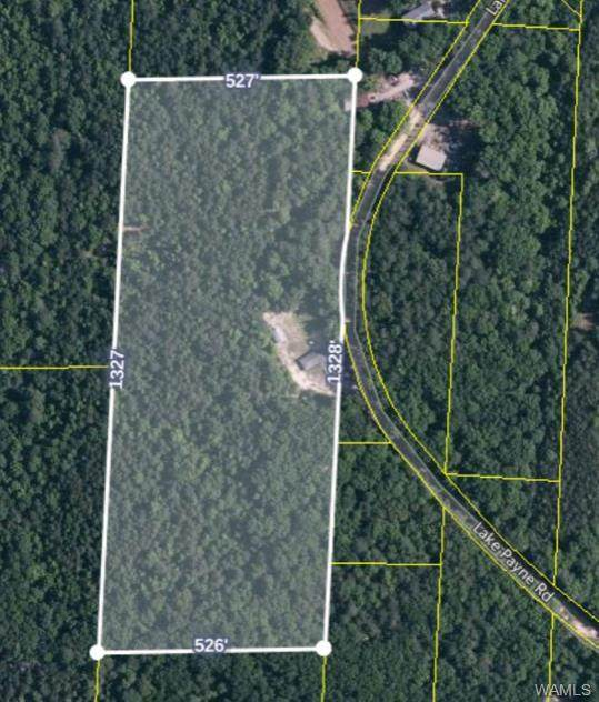 0 Lake Payne Road, DUNCANVILLE, AL 35456 (MLS #137927) :: The Advantage Realty Group