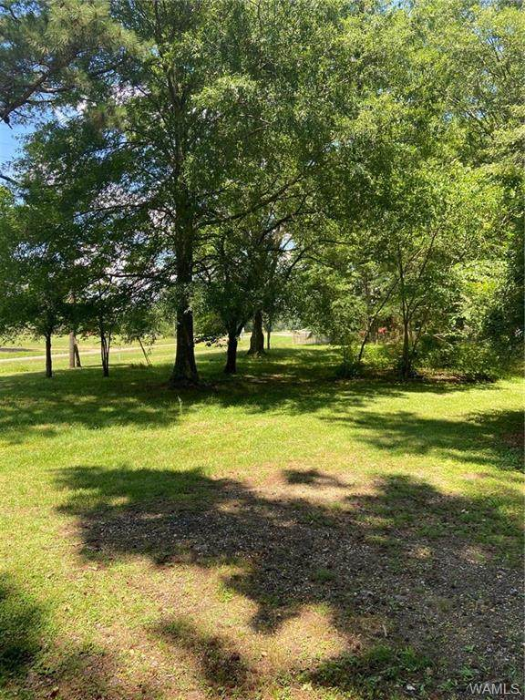 29622 Hwy 17 S, REFORM, AL 35481 (MLS #138499) :: The Gray Group at Keller Williams Realty Tuscaloosa