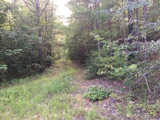 0 Hickory Hills Road, CENTREVILLE, AL 35042 (MLS #138897) :: The Advantage Realty Group