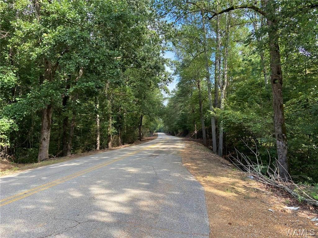23730 Gorgas Road - Photo 1