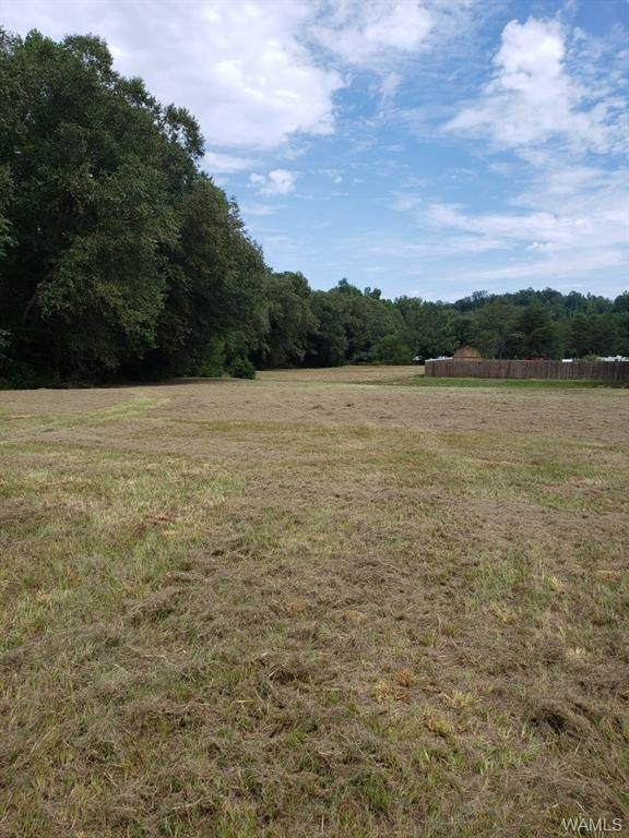 00 Romulus Road, COKER, AL 35452 (MLS #140284) :: The K|W Group