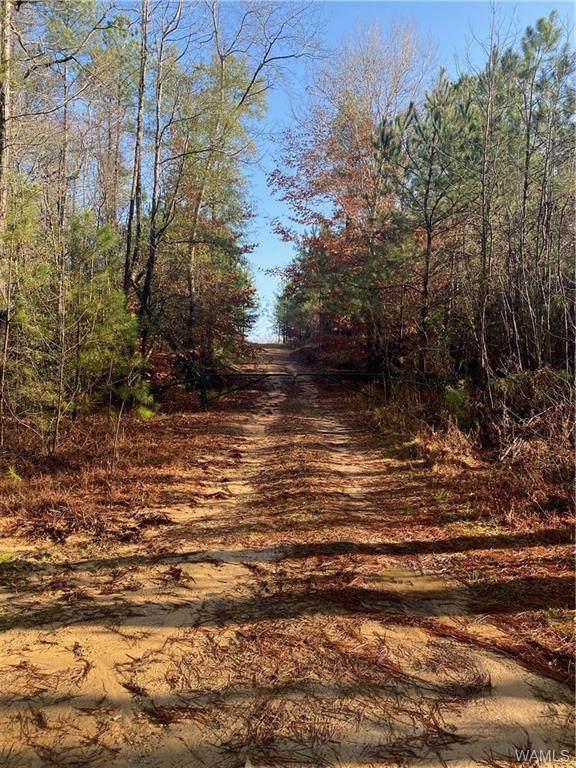 0 Jackson Trace Road - Photo 1
