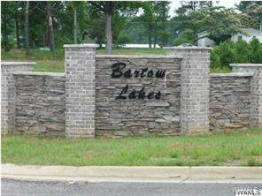 13892 Bartow Lakes Boulevard, DUNCANVILLE, AL 35456 (MLS #142870) :: The Alice Maxwell Team