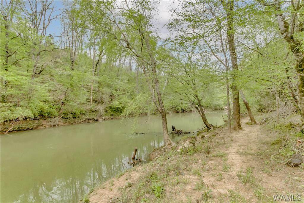 001 Cripple Creek Road - Photo 1