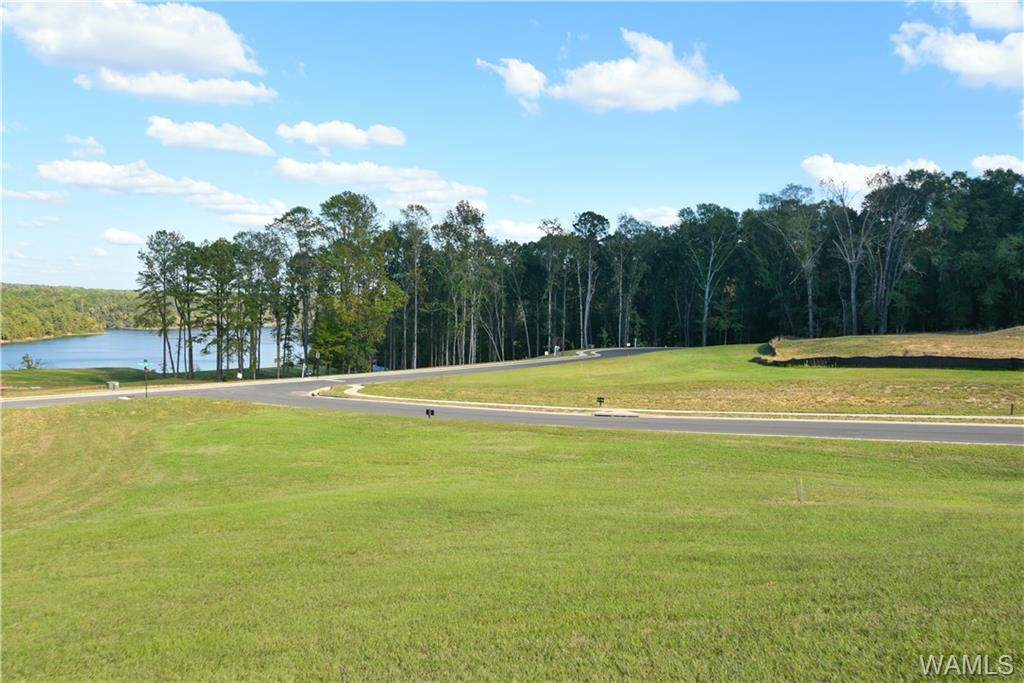 Lot 31 Highland Lakes Point - Photo 1