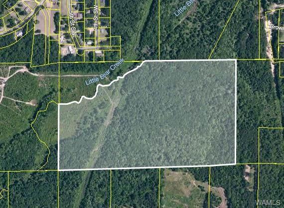 0 County Road 86, GORDO, AL 35466 (MLS #144441) :: The Gray Group at Keller Williams Realty Tuscaloosa