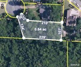 Lot 26 Tuliptree Lane, NORTHPORT, AL 35473 (MLS #145855) :: The Advantage Realty Group