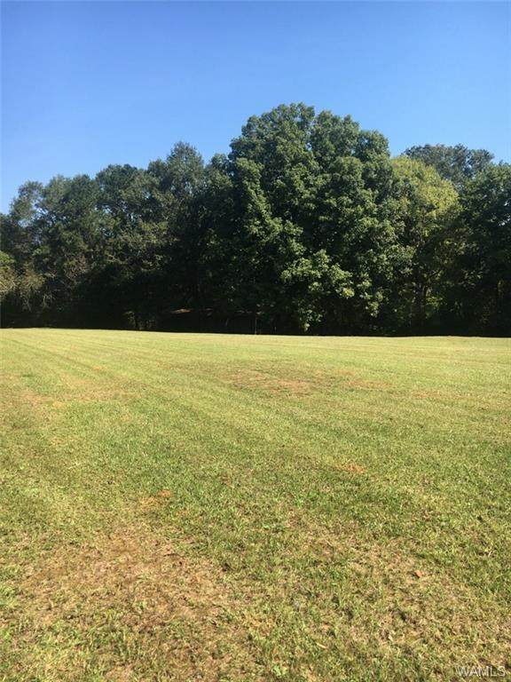 0 Boothtown Rd, BUHL, AL 35480 (MLS #146363) :: The Advantage Realty Group