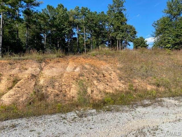 1 Brant Ward Road, COTTONDALE, AL 35453 (MLS #146614) :: The Gray Group at Keller Williams Realty Tuscaloosa
